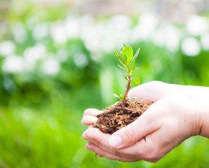 Cinque passi educativi per aiutarli a crescere